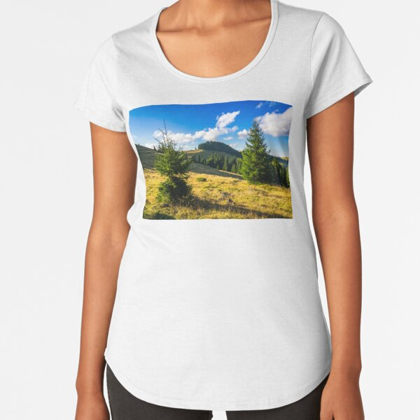 conifer forest  in mountains at sunrise Premium Scoop T-Shirt