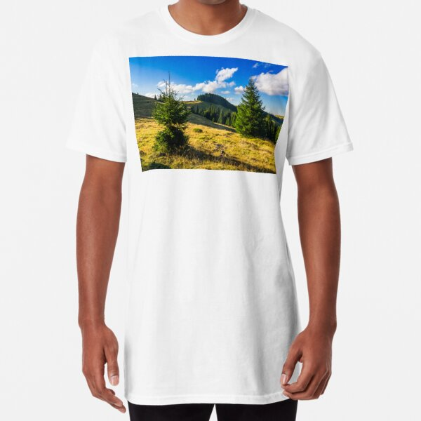 conifer forest  in mountains at sunrise Long T-Shirt