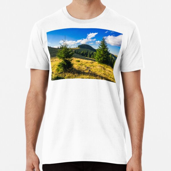 conifer forest  in mountains at sunrise Premium T-Shirt