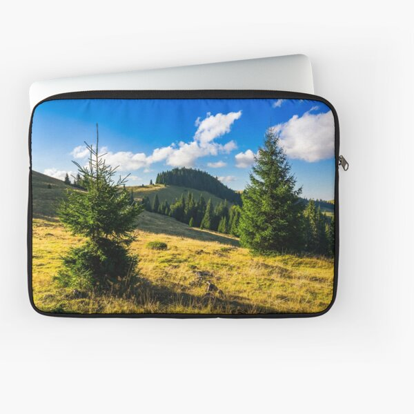 conifer forest  in mountains at sunrise Laptop Sleeve