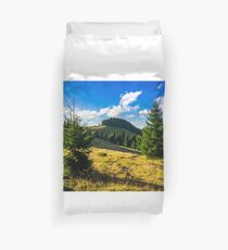 conifer forest  in mountains at sunrise Duvet Cover
