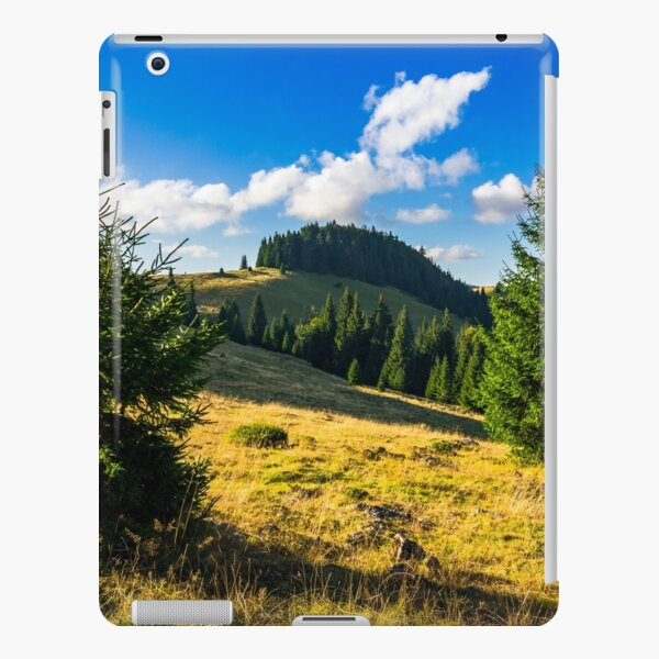 conifer forest  in mountains at sunrise iPad Snap Case