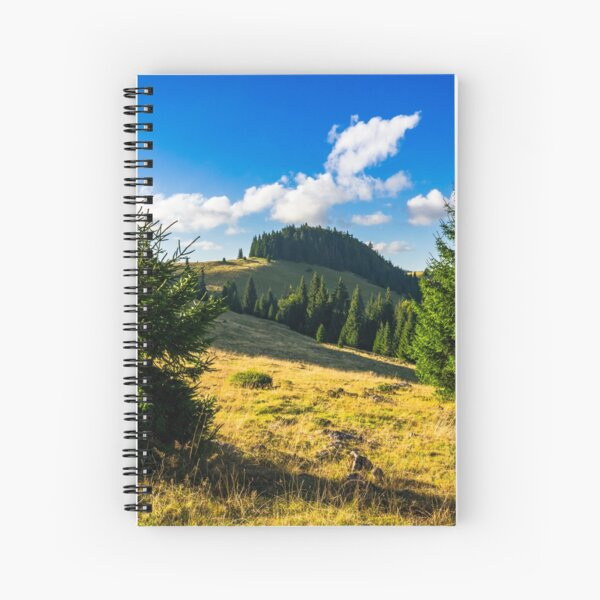 conifer forest  in mountains at sunrise Spiral Notebook