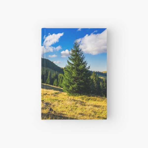 conifer forest  in mountains at sunrise Hardcover Journal