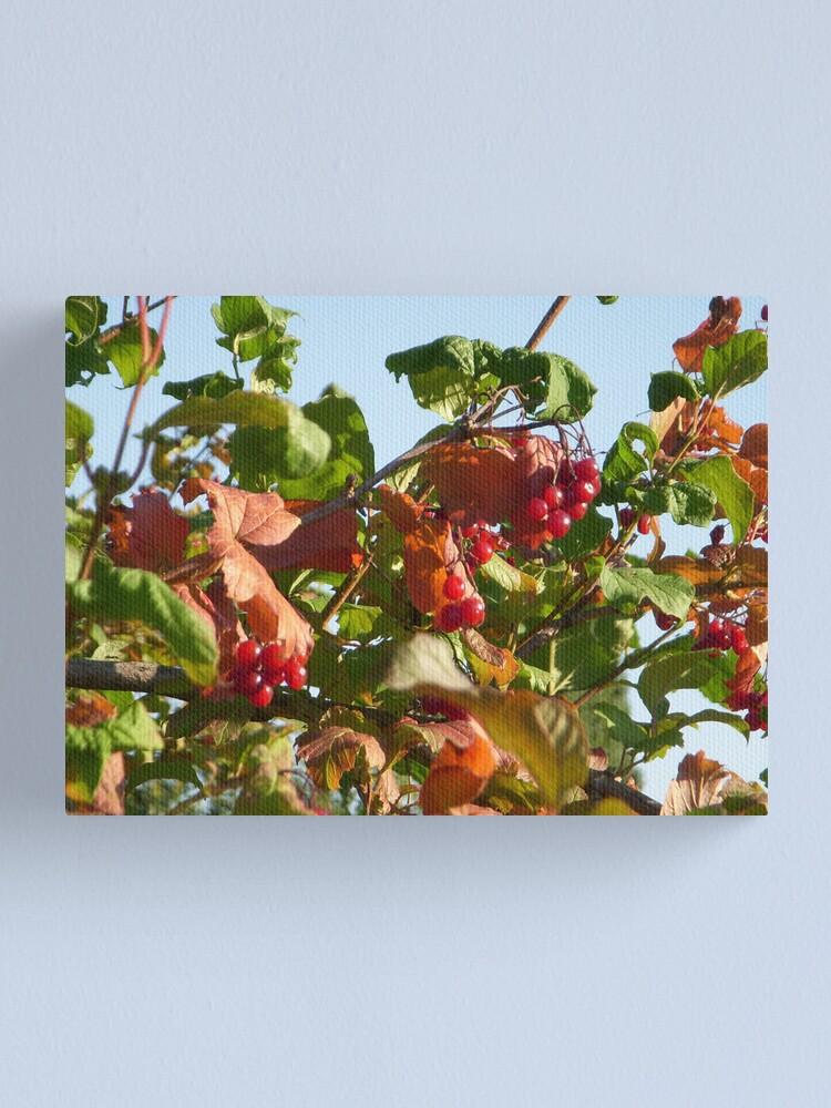 Alternate view of Berries Canvas Print