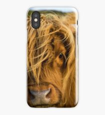 Highland cow on the island of skye iPhone Case