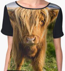 Highland cow on the island of skye Women's Chiffon Top