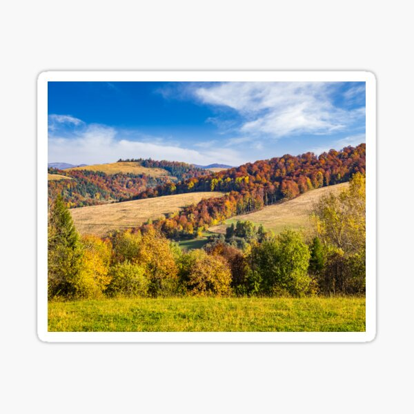 trees on autumn meadow in mountains Sticker