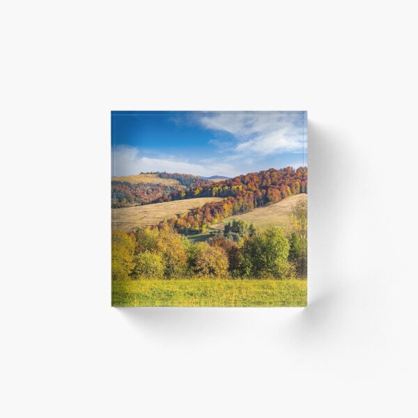 trees on autumn meadow in mountains Acrylic Block