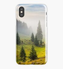 fir trees on meadow between hillsides in fog before sunrise iPhone Case/Skin
