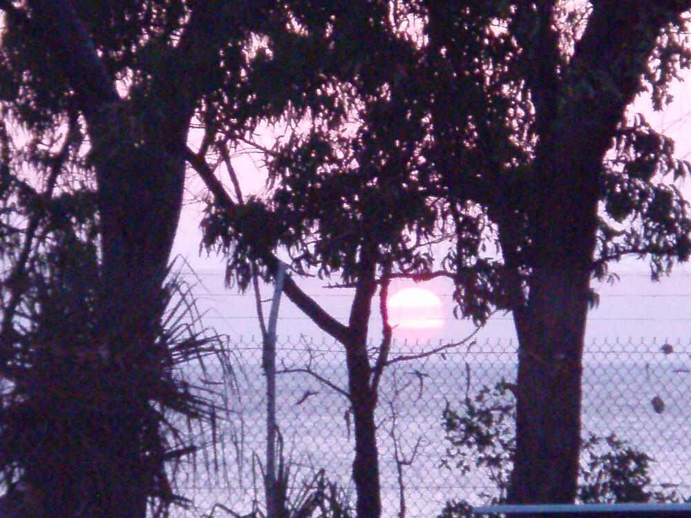 Weipa Sunset by salisburys