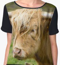 Scottisch Highland cow Women's Chiffon Top