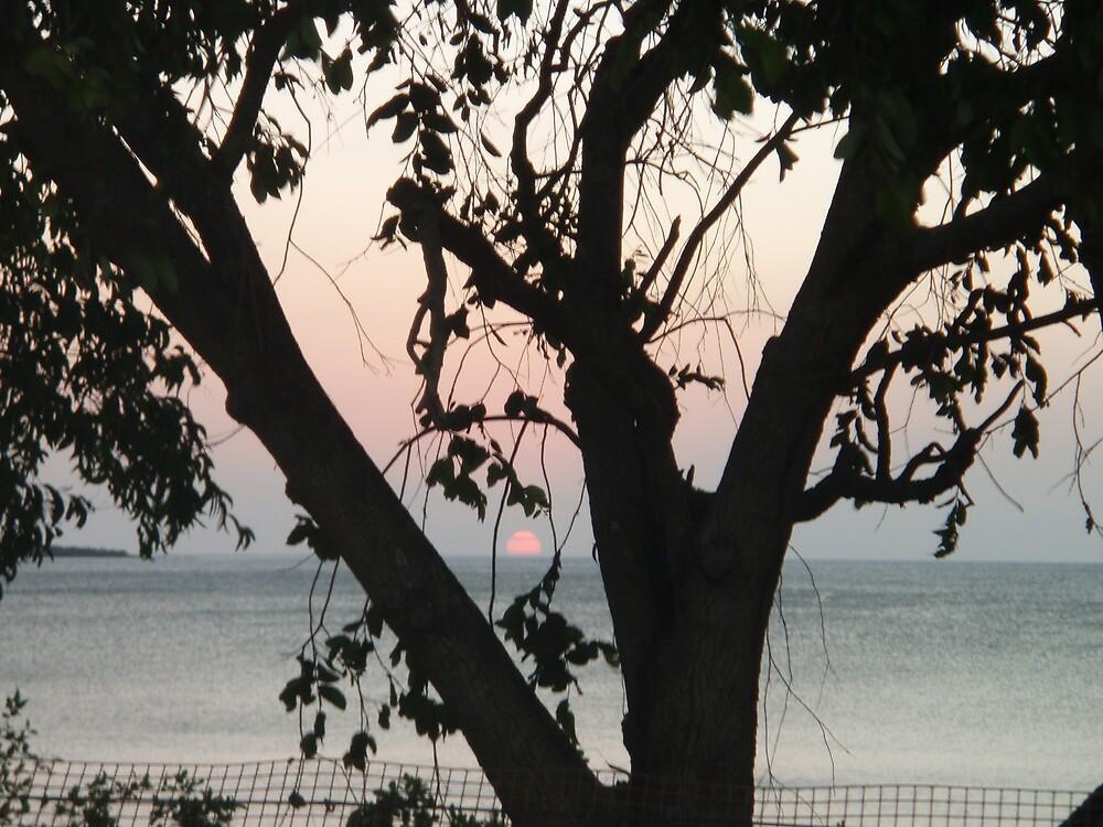 Weipa sunset #2 by salisburys