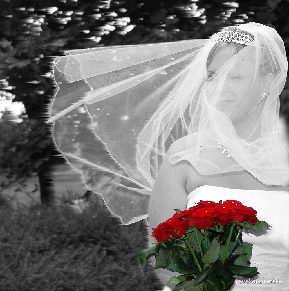 Bride in the wind by evekaczmarska