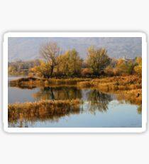 Ponds Sticker