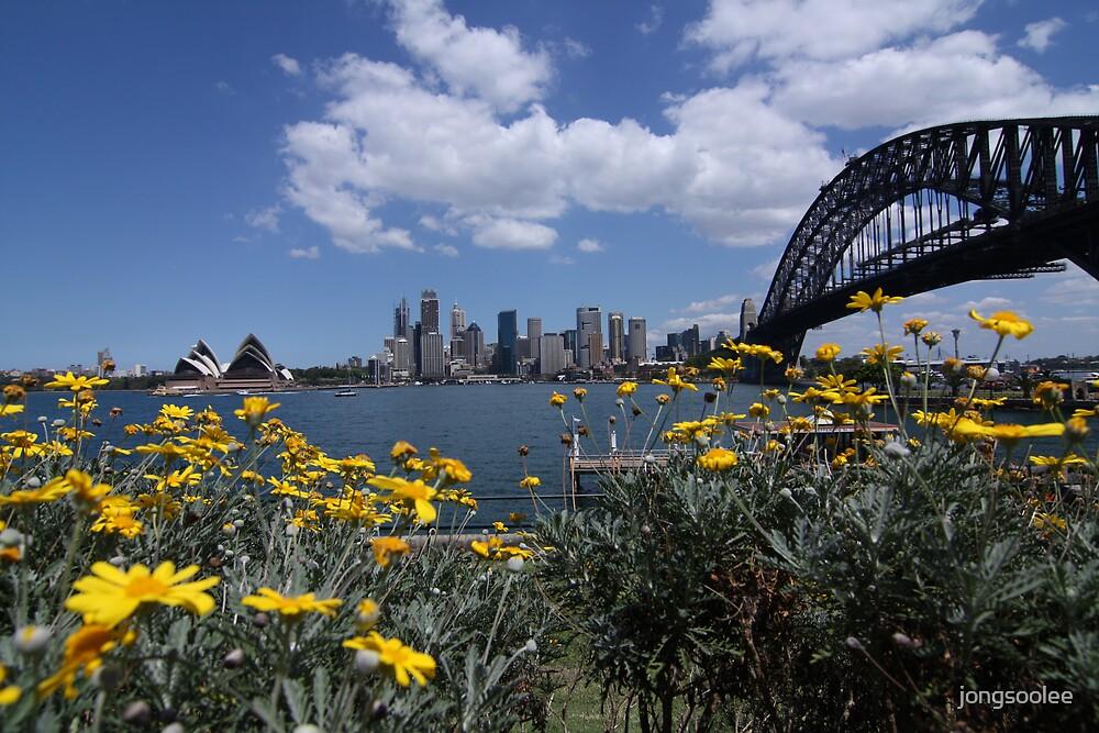 Beautiful Sydney by jongsoolee