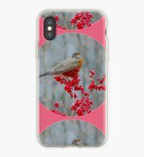 Robin's Winter iPhone Case