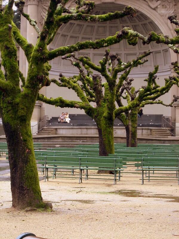 Green Trees by Joci Solano
