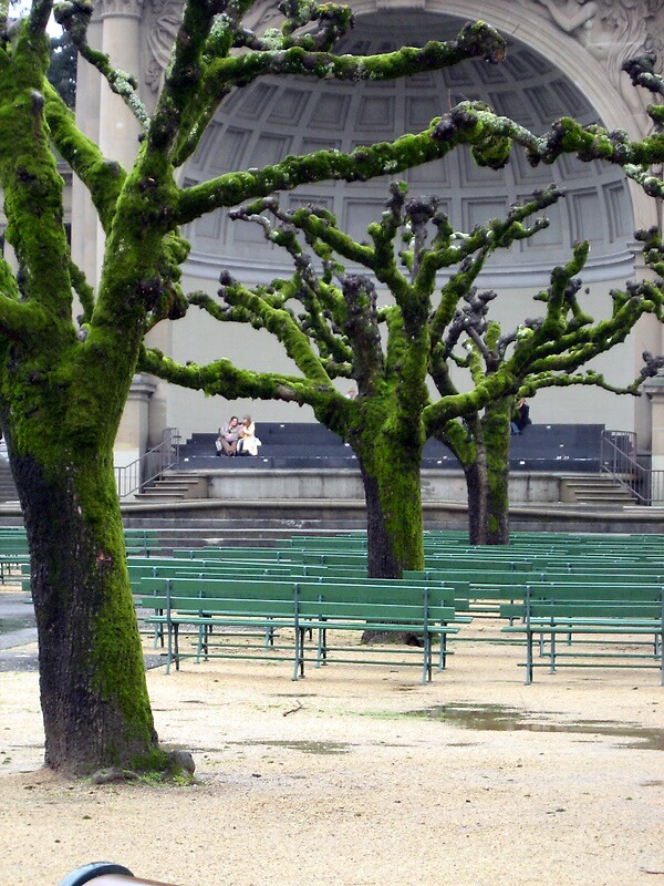 Green Benches by Joci Solano