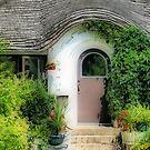 The Door by Teresa Zieba
