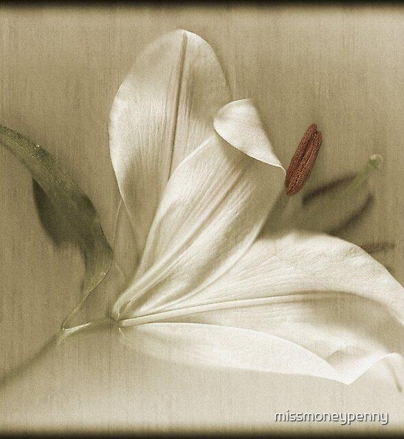 Lily Lustre by missmoneypenny
