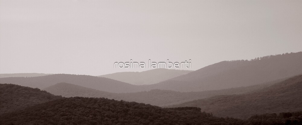 Yarra Valley by Rosina  Lamberti