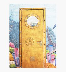 metal door Photographic Print