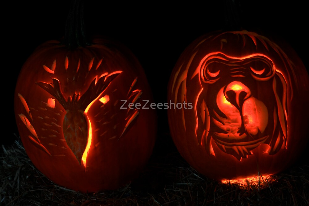 Pumpkin #3 by ZeeZeeshots