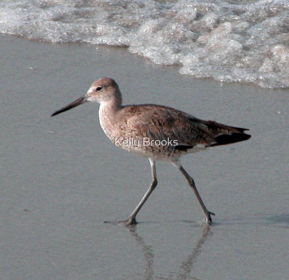 Beach Bird by Bromoson Photography