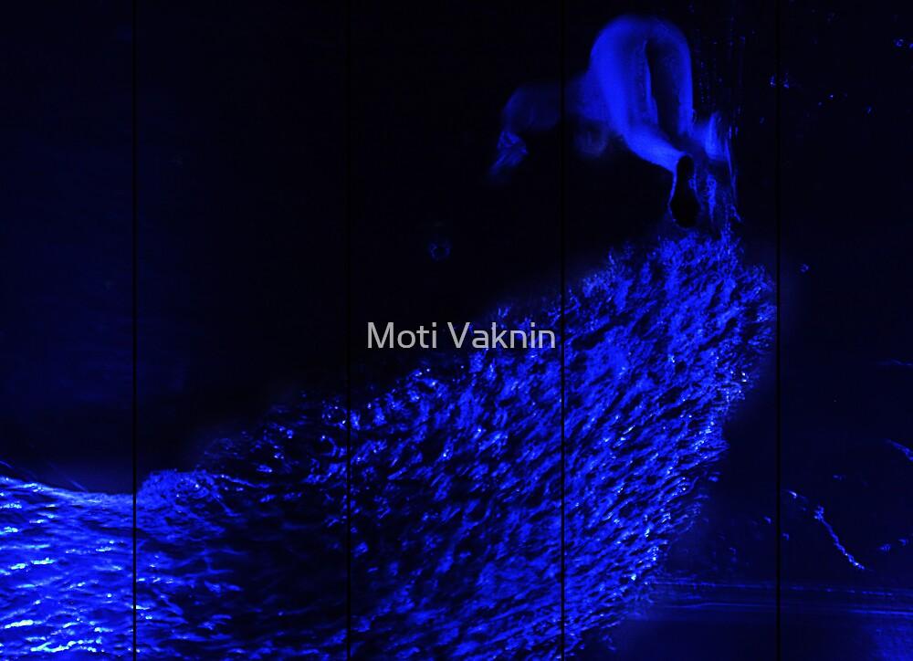 blue by Moti Vaknin