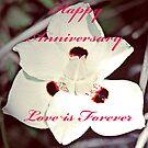 Happy Anniversary  by BobJohnson