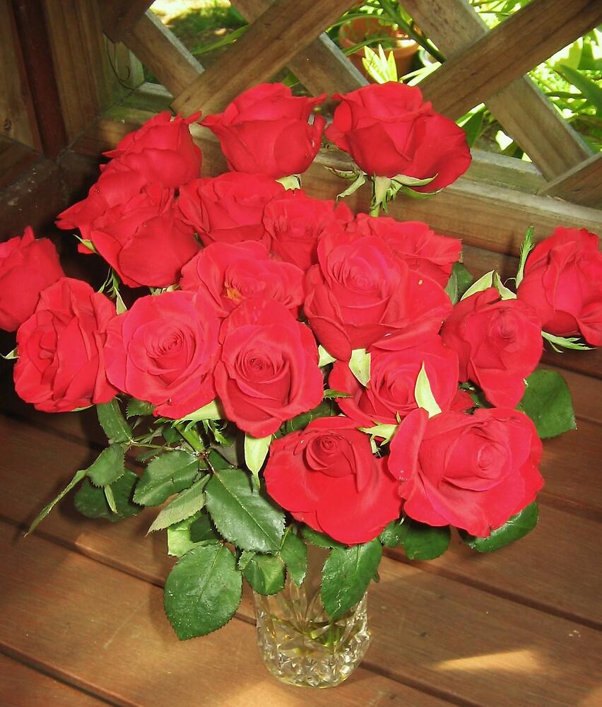 My roses by Zamia