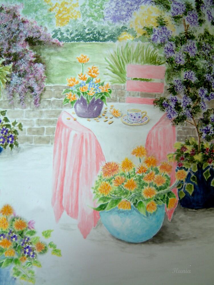 Patio Delight by Ilunia Felczer