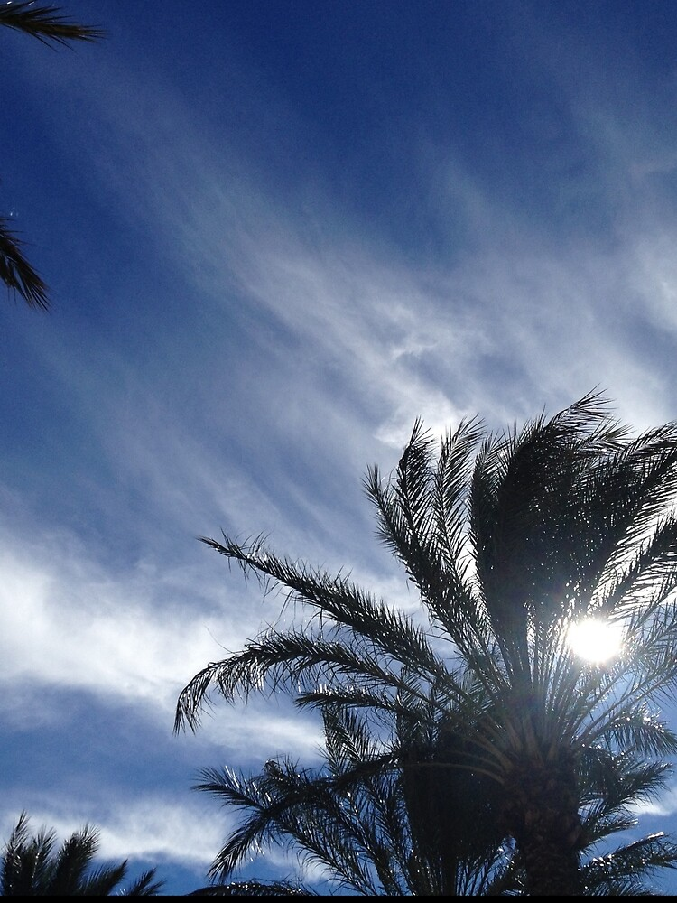 Palm Springs Winter Sky by douglasewelch
