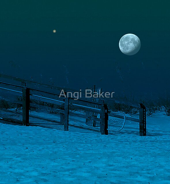 The Long Passionate Night by Angi Baker