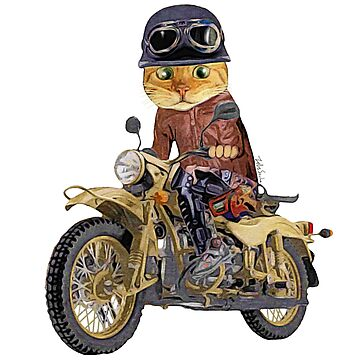 Cat riding motorcycle by felissimha