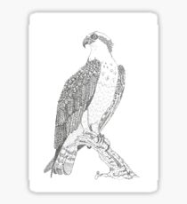 Nova Scotia Osprey Sticker