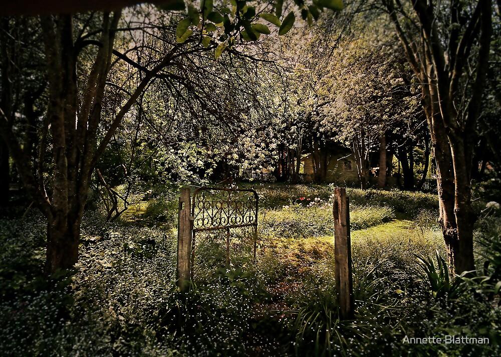 Rusty Gate by Annette Blattman