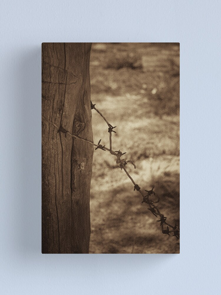 Alternate view of Old barbed wire - sepia Canvas Print