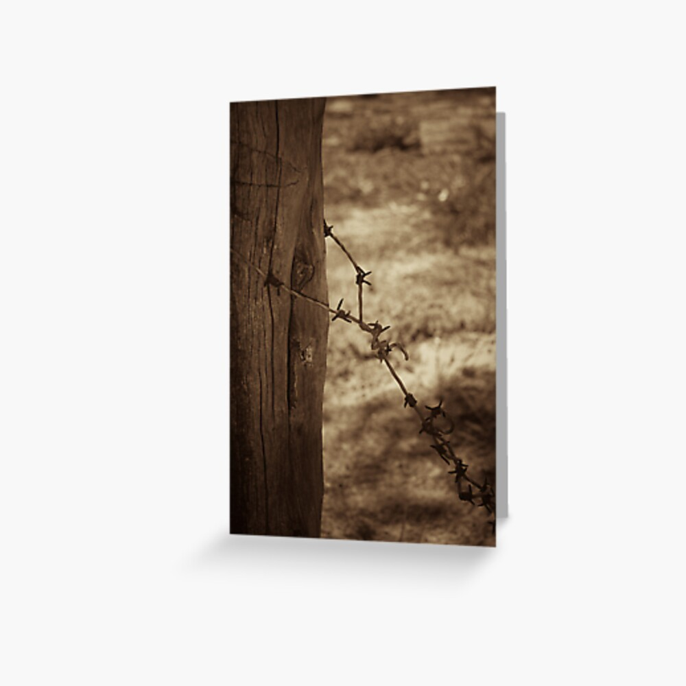 Old barbed wire - sepia Greeting Card