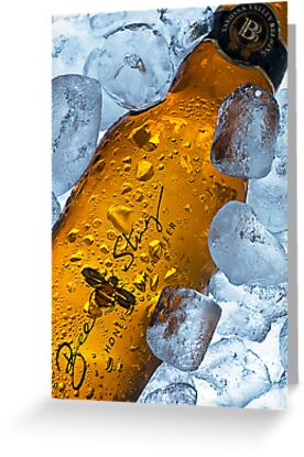 Bee Sting Beer. by Ryan Carter