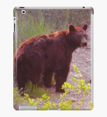 Out of the Shadows iPad Case/Skin