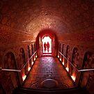 The Threshold by Anuja Manchanayake