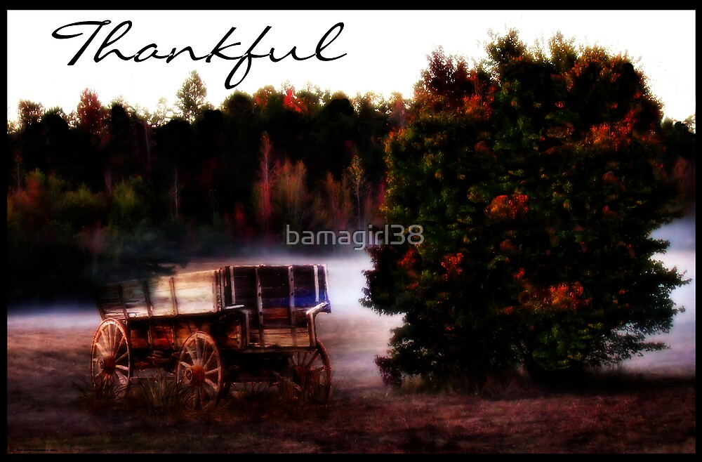 Always Thankful by bamagirl38
