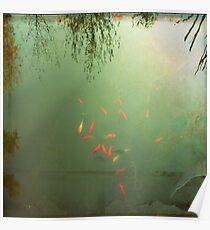 _ goldfish _ Poster