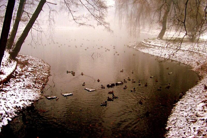 Winter.... by Maja Maja