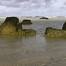 Rocks on the beach by Steve plowman