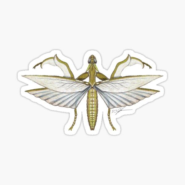 Mantis Monster Sticker