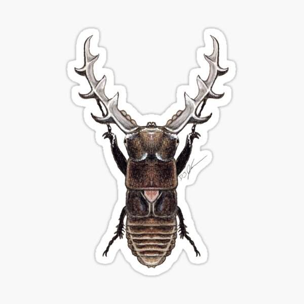 Stag Beetle Monster Sticker