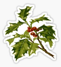 Holly Christmas Red Berry Sticker